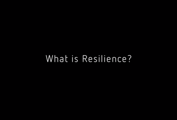 Paper Tigers & Resilience